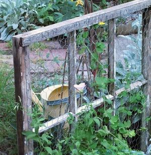 old window trellis spring diy projects