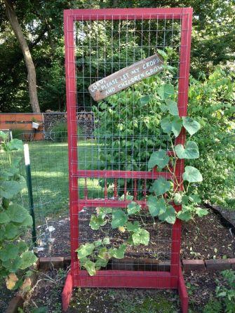 vintage door screen trellis diy garden backyard