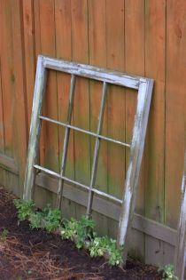 vintage window trellis backyard diy ideas